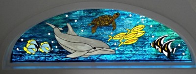Underwater Dolphin, Seaturtle, Fish