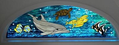 Underwater Dolphin, Seaturtle, Fish
