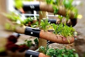 Επιχειρηματικές ιδέες: Ένας κήπος σε σπείρα!