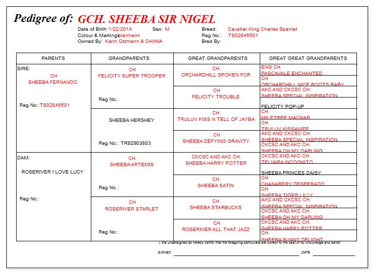 GCH Sheeba Sir Nigel Pedigree