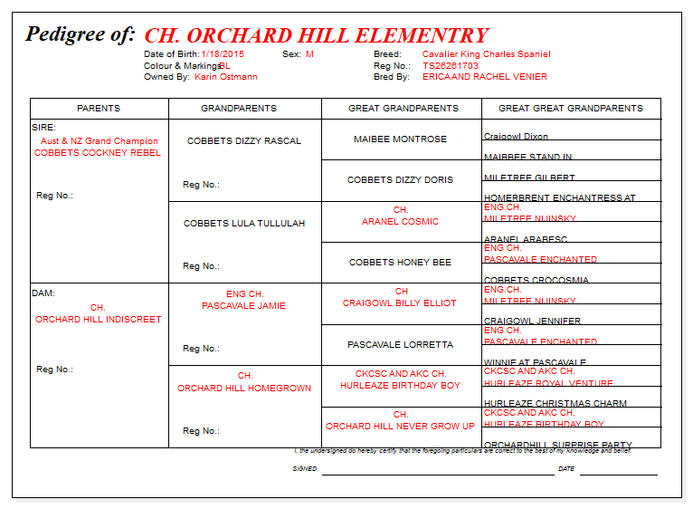CH Orchard Hill Elementary Pedigree