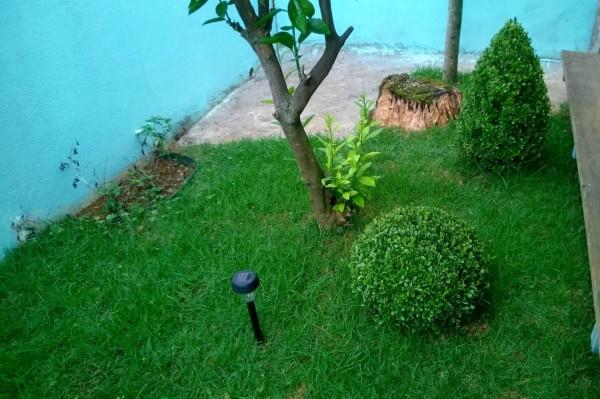 Novo Jardim