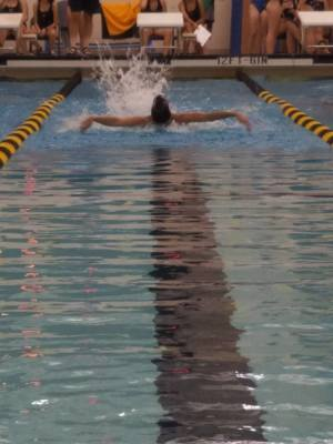 Mens Swim & Dive