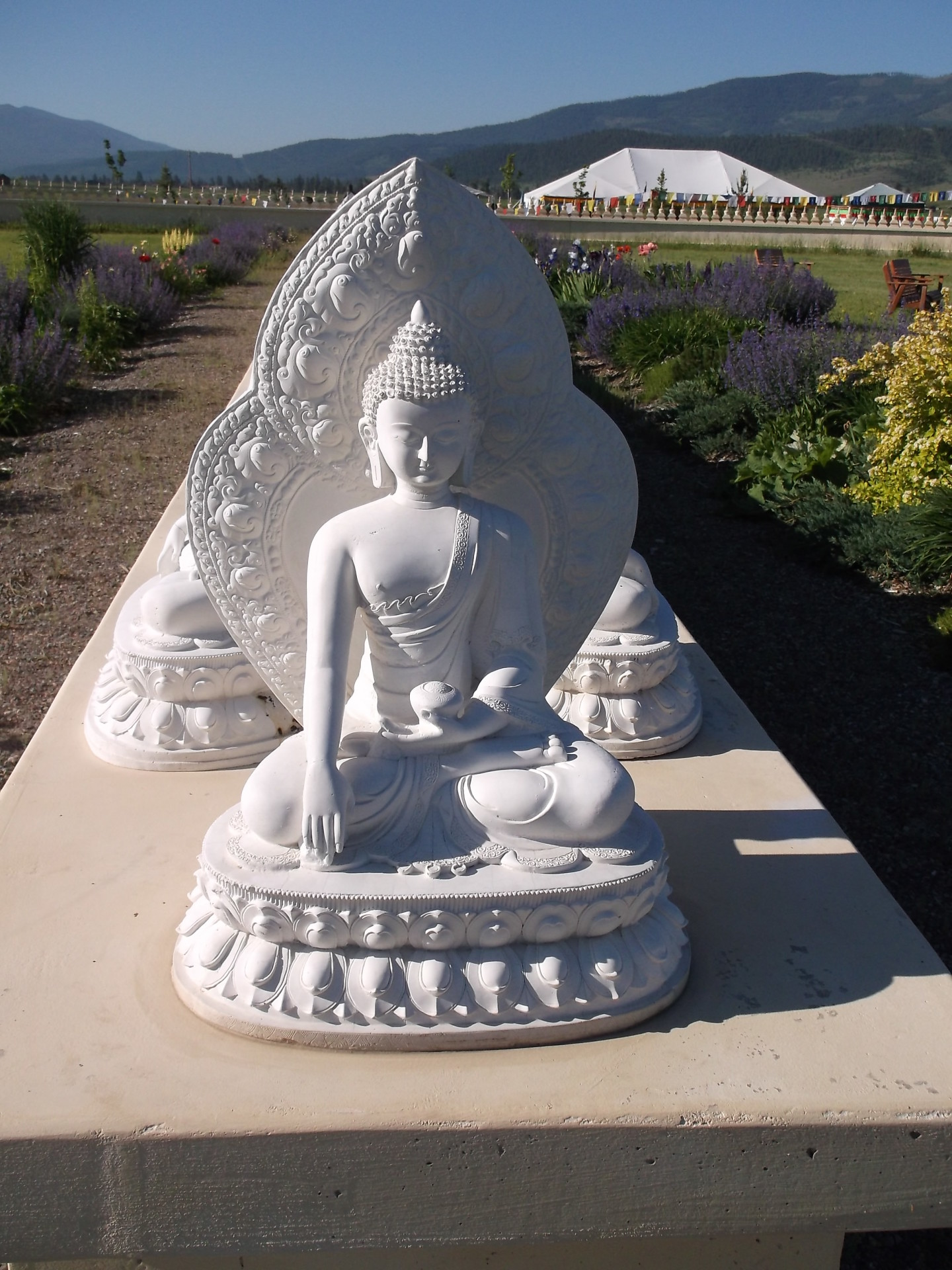 Montana, Buddha, Truth, Freedom, Love, Nature, Spirituality, Rebirth, Chakra, Mantra