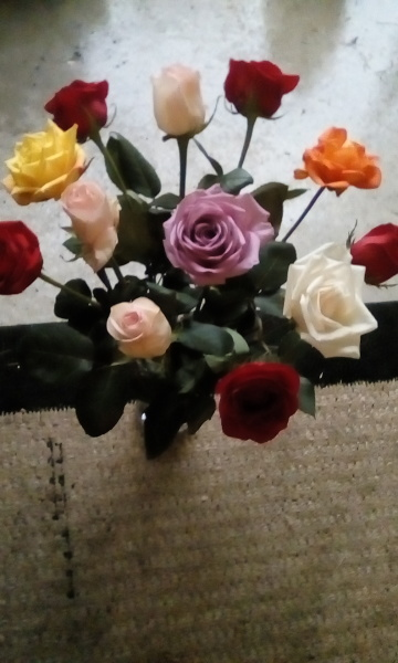 Roses for My Girlfriend