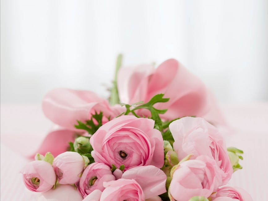 Top 5 Tips on Choosing an Online Flower Shop
