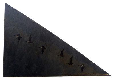 Bird Flight Pattern