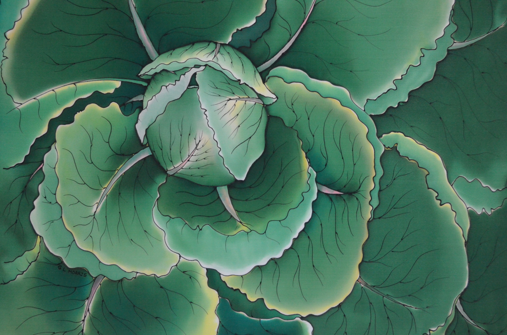 "Animated Cabbage 22""x 32"""