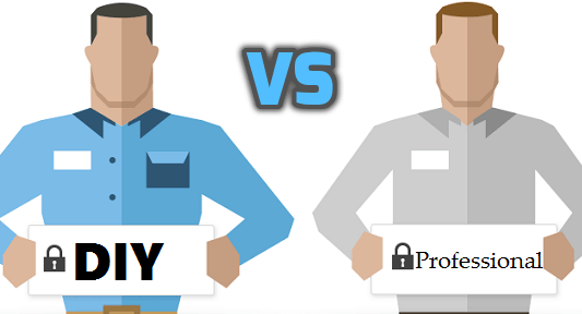 DIY vs Professional Carpet Cleaner?