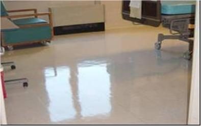 NeverStrip Ultra Durable Floor Finish