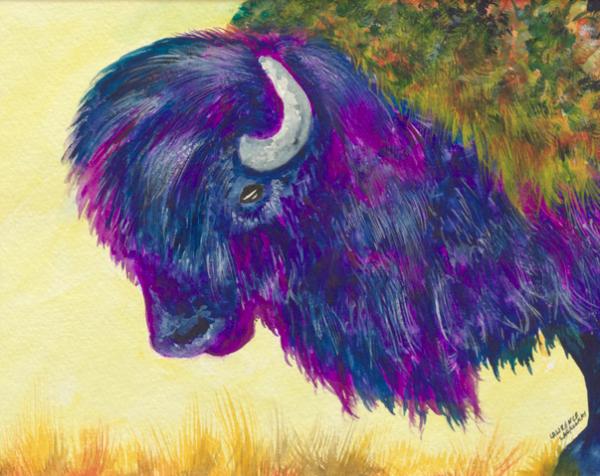 Purple Bison