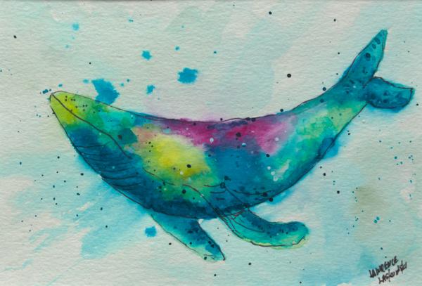 Rainbow Whale 1