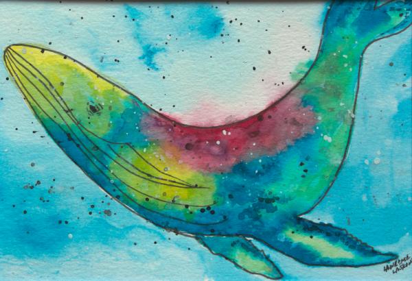 Rainbow Whale 2