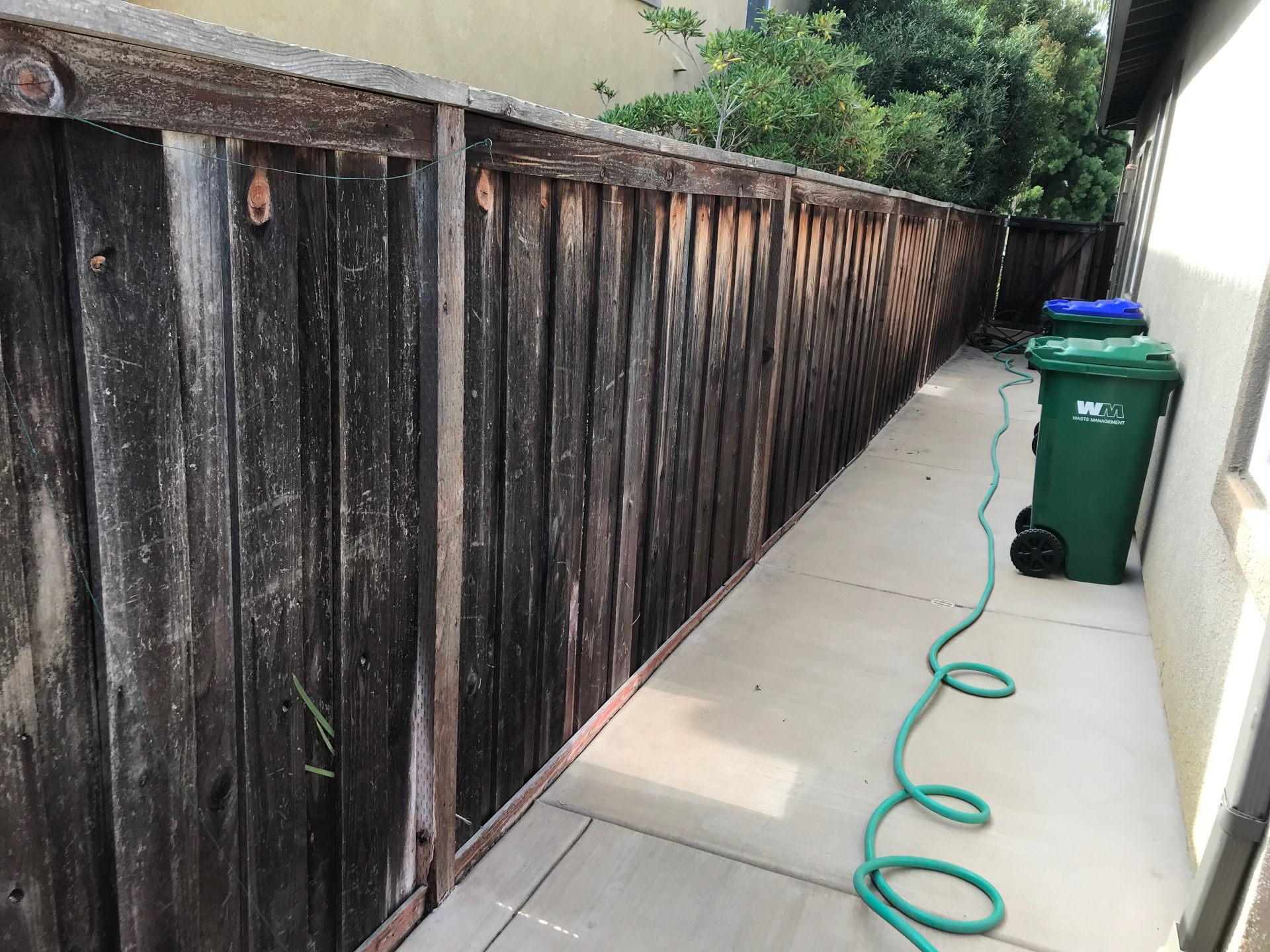 11 year old fence
