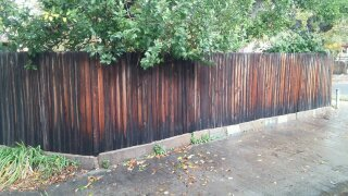 15+ year old fence