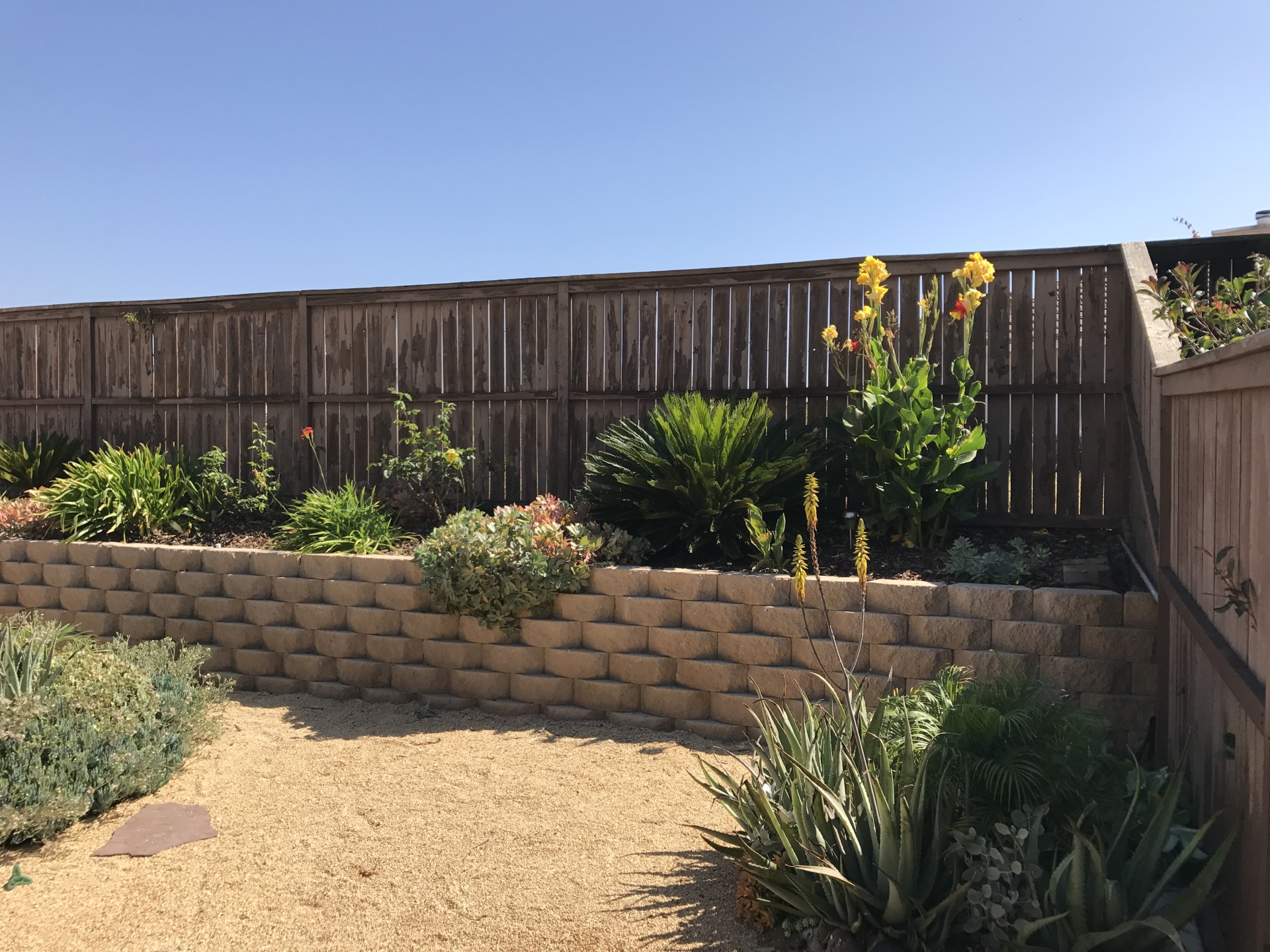BEFORE (Painted Fence)