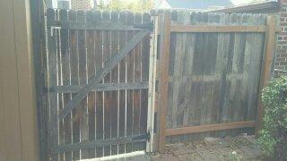 BEFORE (Gate)