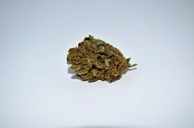 Texada TimeWarp cannabis strain on white backround with green quality review