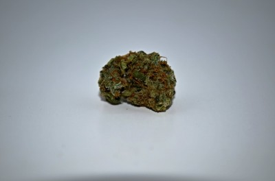 Critical mass marijuana with white backround and review