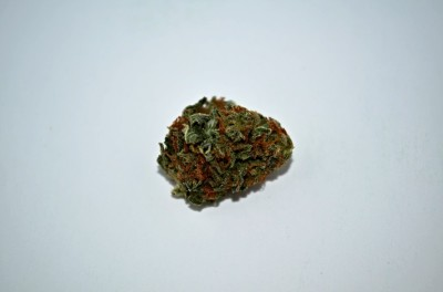 Sherbert cannabis on white backround with Green quality review