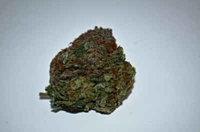 Gods Green Crack Cannabis on white backround with Green Quality review