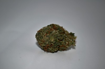 Green Ribbon Cannabis Strain on white backround with Green Quality review
