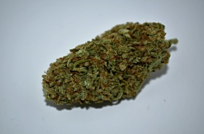 Super Lemon OG Cannabis on white backround with review
