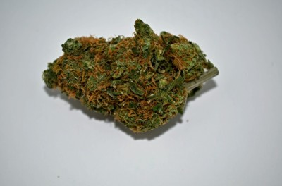Sour Diesel cannabis strain on white backround with greenquality review