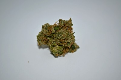 Martian Mean Green Cannabis strain on white backround with Green Quality review