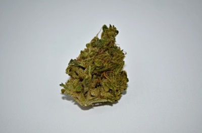 Fire OG Cannabis strain on white backround with review