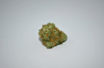 The Hog Cannabis strain on white backround with Green Quality Review
