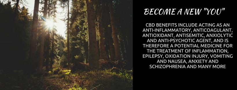 CBD BENEFITS INCLUDE ACTING AS AN ANTI-INFLAMMATORY, ANTICOAGULANT, ANTIOXIDANT, ANTISEMITIC...