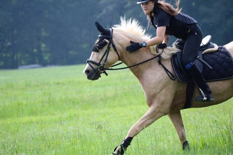 Cross Country Horse Rider Image