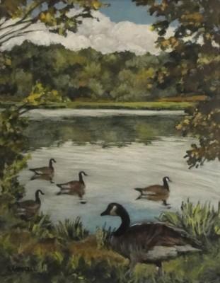 Lake Williams Geese
