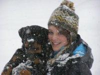 rottweiler puppy in snow