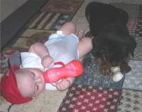 rottweiler laying with baby