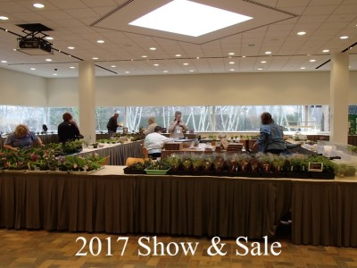 Show and Sale Set-up