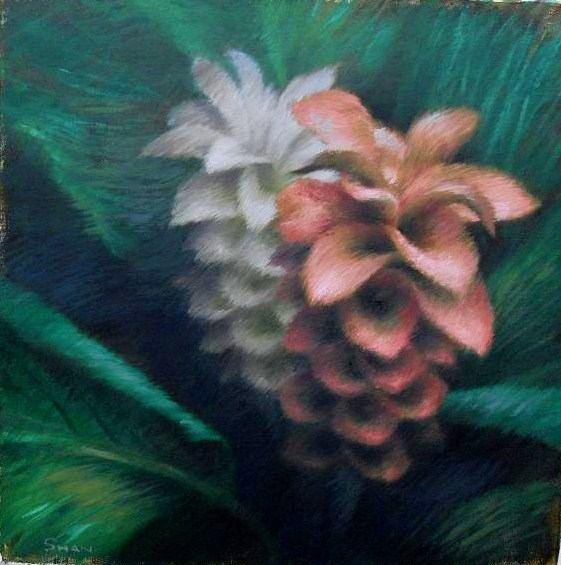 GINGER FLOWER 2