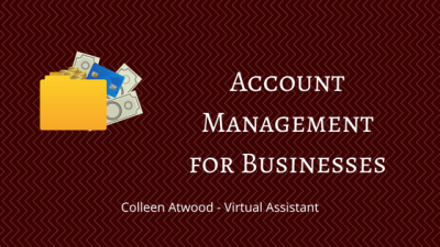 Virtual Assistant Services - Account Management