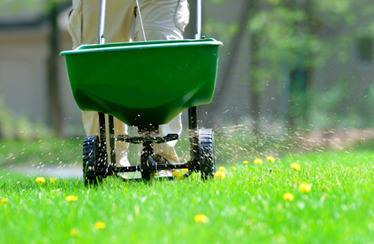 Turf and Shrub Treatments
