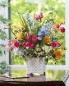 Excitable flowering plant retrieved favour