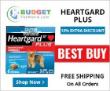 Fantastic pet website arranged pets ads white background
