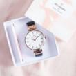 Wheedling watch winder verified brand