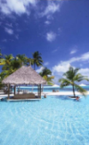 Natural cheap hotel rooms arranged palm tree beach