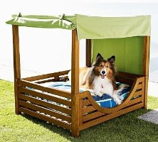 Great close up games distributed pets cage