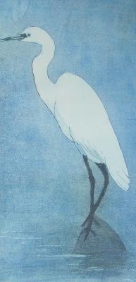 Waiting Egret