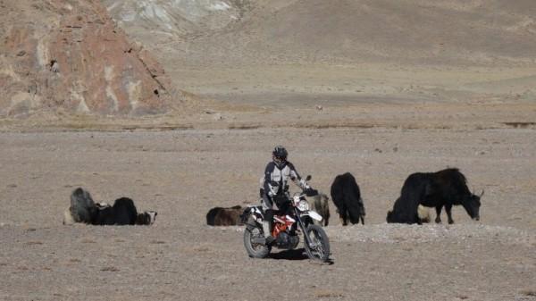 Pamir highway by motorbikes (Dushanbe – Osh)