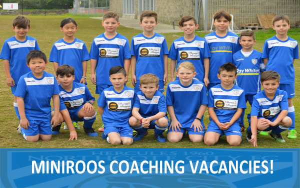 MINIROOS COACHING VACANCIES