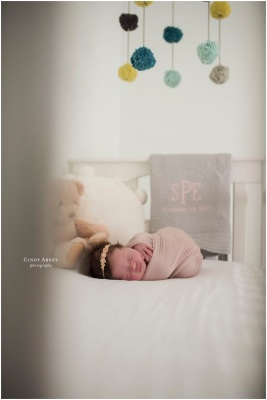 Cindy Abney Baton Rouge Newborn Photographer