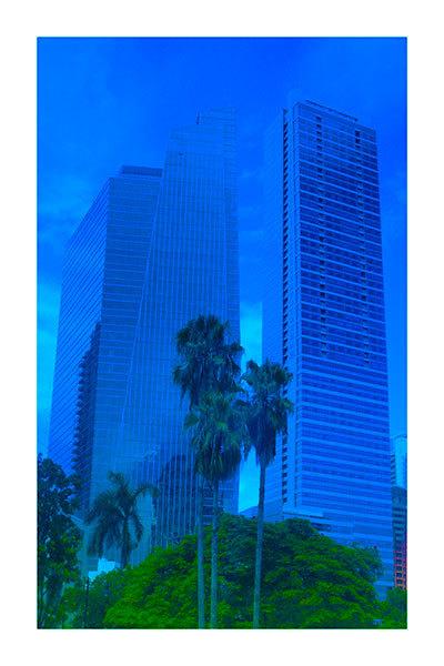 Into the blue (Miami)